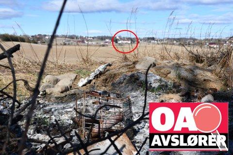 MEDISINFLASKER: Blant det utbrente søppelet i jordekanten var avfall fra Bror Helgestads virke som veterinær. Gården Fodstad sees i bakgrunnen. Foto: Tor Arne Brekne