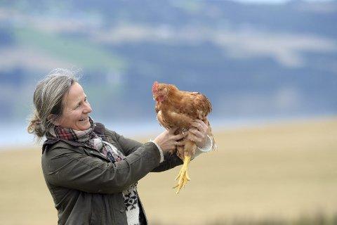 GOD KONTAKT: Marianne Olssøn med en av sine kyllinger. Denne har en størrelse som forteller at det er cirka en uke igjen til slakt. Industrikyllinger ser aldri dagslys, og stresses til rask vekst. Men her på Helgøya får fuglene leve lenger, og har utsikt mot Østre Toten. FOTO: PER A. BORGLUND
