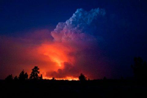 En skogbrann sør i den amerikanske delstaten Oregon i midten av juli. Noen uker tidligere ble Oregon, delstaten Washington og vestlige deler av Canada rammet av en hetebølge som ville vært omtrent utenkelig uten menneskeskapte klimaendringer, ifølge forskere. Foto: Myndighetene i Oregon / AP / NTB Foto: John Hendricks