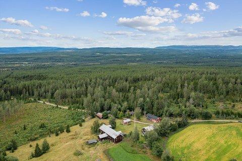 ENORM: Dronebilde over tun, deler av dyrket mark og ellers deler av skogeiendommen Nedre Teenåsen.