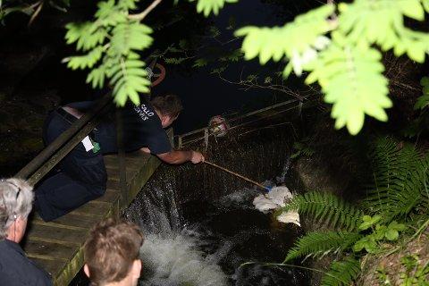 NFB Oppegård kjører ut for å redde 5 små andunger som har havnet i en kloakk-kum på Kolbotn. FOTO: Tipse.no/Daniel D. Laabak