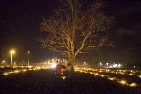 VINTERSOLVERV: Onsdag kveld ble solsnu markert ved eika i Ås.  FOTO: Karen Gjetrang