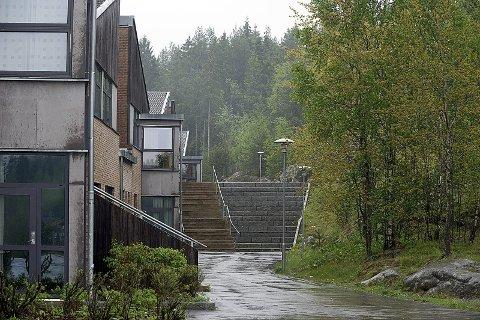 Ledig tomt: Nord for Haugjordet ungdomsskole ligger det en tomt som kan bli benyttet til ny skole.foto: Ole Kr. Trana