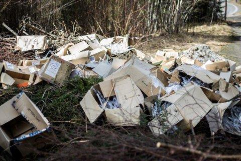 SAGATUN: Da det nærmet seg 17. mai og folkefest på Sagatun, ryddet kommuneskogen selv opp.