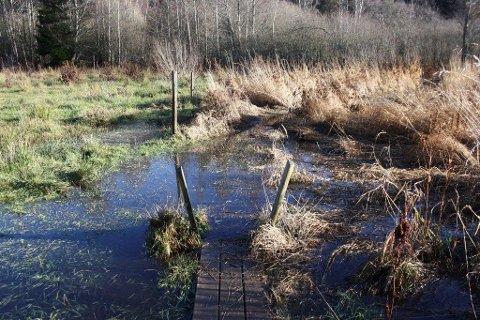 UFREMKOMMELIG: Broene ligger under vann, og selv med slagstøvler er det temmelig ufremkommelig i nordenden av Tussetjern nå.