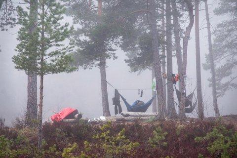 Tidlig en morgen: Det er fin overnattingsplass ved Tømmerholtjern. Bildet er tatt grytidlig, før morgentåken letter og det er for tidlig å stå opp.