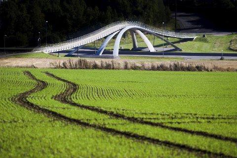 GRENSESKILLE?: Det er foreslått å overføre deler av Ås øst for E18 til Nordre Follo kommune. Da kan da Vinci-broen markere kommunegrensen.