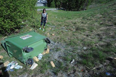 TAR GRAP: Nordiske Handelsparker, som eier plassen hvor vogntog parkerer på Fugleåsen, tar grep og fjerner søppel.