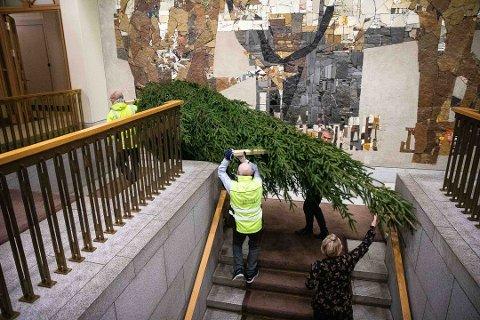 HØYT: Her bæres det 5,5 meter høye treet fra Kirkebygda opp til vandrehallen på Stortinget.