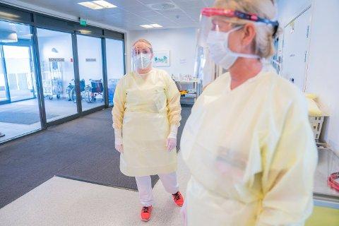 VIRUSET SKAPER MYTER: Mange lurer på mye rundt korona-viruset. Selv ekspertene klør seg i huet.