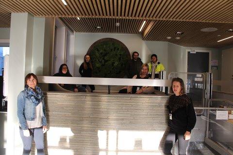 PÅ PLASS: Mirjana Hodnekvam, Helle Rødahl, Cecilia Sletmoe, Magnus Refsnes, Mathias Simensen, Tone Aurlien Karlsen og Ida Skjerve var tilstede da kunstverket ble hengt opp.