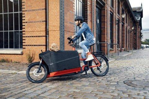 DYR SYKKEL: Det framgår ikke av dommen hvilken type sykkel som ble stjålet, men Riese & Müller er blant annet kjent for sine laste- og transportsykler.
