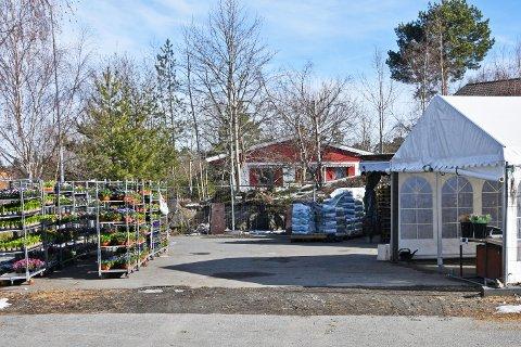 Singh blomster på Flaskebekk holdt åpent for salg etter at nedstengningen var innført.