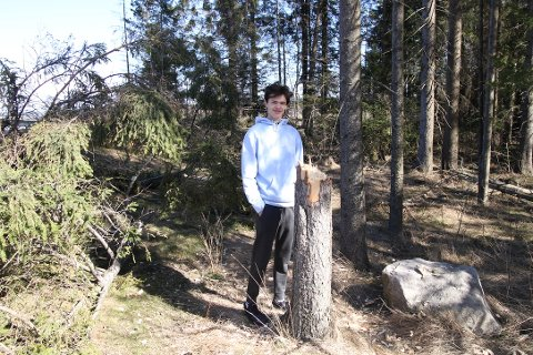 Lennart Lushi står ved restene av det treet han fikk flyttet vekk fra Kroerveien: — Det er lett å se at dette er felt med øks og ikke motorsag, sier Lennart.