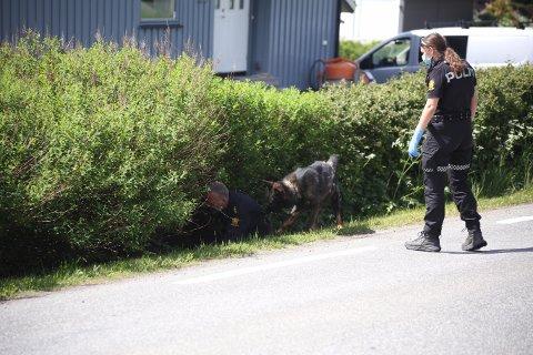 KASTET FRA SEG KNIVEN I HEKKEN: Etter knivstikkingen i Kråkstad 10. juni kastet 41-åringen fra Follo fra seg kniven i hekken, der den ble funnet av politiet.