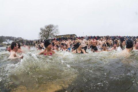 Ny rekord?: Fra i fjor da det ble satt norgesrekord i isbading ved Batteristranda. Arkivfoto: Mats Grimsæth