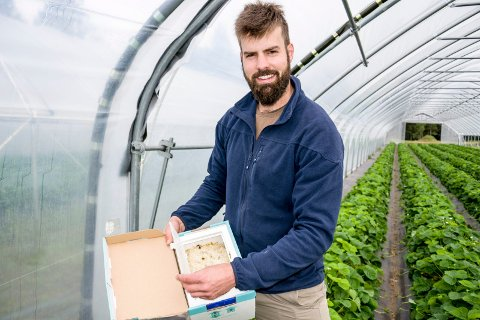 I semifinalen: Sondre Austein fra Brunlanes har kommet fram til semifinalen i konkurransen om å bli Årets unge bonde i Norge. Nå står det 15 deltakere igjen av de 453 som opprinnelig ble nominert.