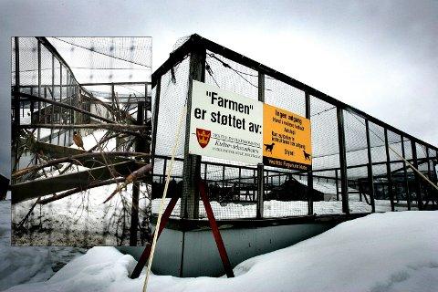 FASANOPPDRETT: På denne farmen nord i Kvelde driver Vestfold fuglehundklubb oppdrett av fasaner og rapphøns. Flere fugler har blitt satt ut ulovlig for at fuglehundeiere skal trene på jakt. Klubben beskyldes også for dyreplageri. Bildene er fra ØPs besøk på gården i 2006.