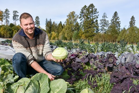 IVRIG: Tore Jardar Skjønsholt Wirgenes forteller ivrig om drømmen han har om å samle mattilbudene i Larvik under ett tak.