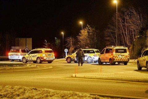 AKSJON: Det var et massivt oppbud med bevæpnet politi i Sande under pågripelsen.