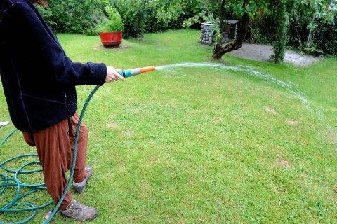 Vi vanner for mye: Hvis innbyggerne i Larvik ikke begrenser vanningen må kommunen innføre totalforbud mot vanning.