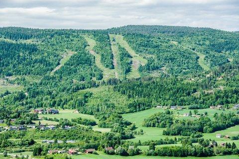 HYTTEBOOM: Det er allerede mange hytter i området rundt det gamle skianlegget i Svarstad. Og flere kan det bli.