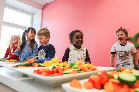 FARGERIKE FAT: 5-åringene Linnea Høyby Hellingsrud (f.v.), Nora Høyby Syrrist, Ole Dahl, Ikhlas A. Ali og William Elias Quinn hjelper til med å kutte opp grønnsaker til mellommåltid.