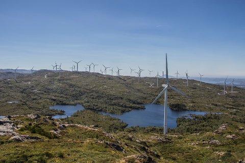 Ikke velkommen: Turistforeningslag i Vestfold, Buskerud og Telemark ønsker ikke vindkraftutbygging, og inviterer til støttemarsj for naturen 12. mai.