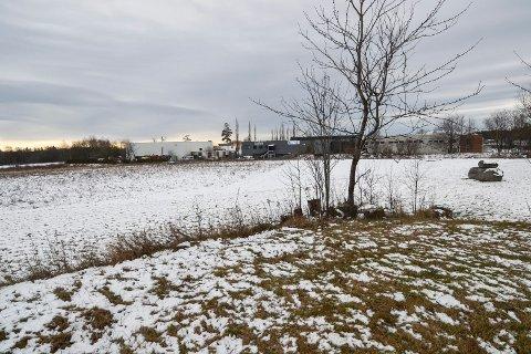 SKOLMAR: Dette området ved næringsområdet på Skolmar (i bakgrunnen) skal nå også bygges ut til næringsformål. Raveien ligger til venstre midt på bildet.