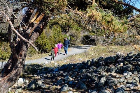 PÅ TUR: Påska byr på flere gode turdager. Her er Amalie (4), Emil (4) og Celine (8) Lind Brusten, samt pappa Espen Lind (42) på tur på Mølen i fjor.