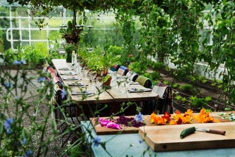 IKKE BARE HAGE: Rosendal Trädgård i Sverige har en lekker kafé som brukes av folk daglig og som kan leies til fest, bryllup og bursdager.