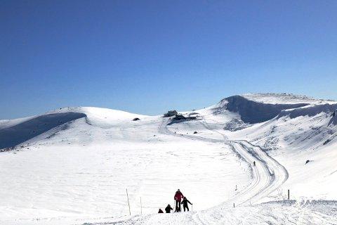 Snøskredet gikk rundt halvannen kilometer fra turisthytta på Høgevarde på Norefjell.