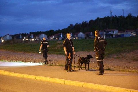 FLERE PATRULJER: En mann som truet bilister med en slegge i Nansetgata i Larvik forrige uke gjorde at politiet måtte rykke ut.