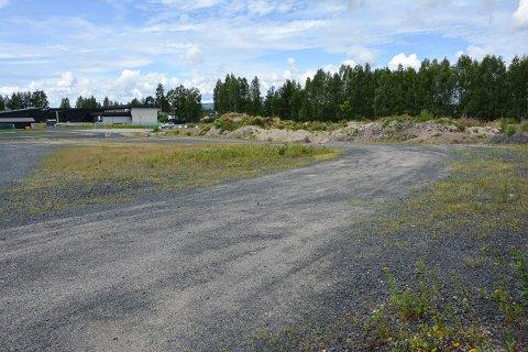 KOMMUNENS TOMT: I 2010 kjøpte Elveurm kommune 20 mål av den gamle impregneringsomta. I bakgrunnen Vestad skole.