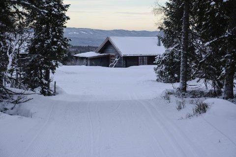ROGSTADBAKKVOLLEN: Søndag var hytta åpen for første gang i vinter, og folk sprang på ski og spiste vafler i hytta.