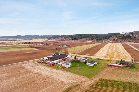 STORGÅRD TIL SALGS: Det er ikke ofte så store gårder kommer til salgs. Denne fra Gjesåsen i Åsnes kommune har et område på to millionar kvadratmeter og kan bli din for 14 millioner kroner.