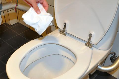 STORE KONSEKVENSER: Én million nordmenn gjør denne toalettblemma. Det kan i verste fall føre til store rotteplager og miljøforurensning. Arkivfoto: Østlands-Posten