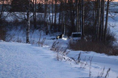 Blodet som ble funnet lørdag tilhører savnede Janne Jemtland. Det bekrefter politiet søndag.