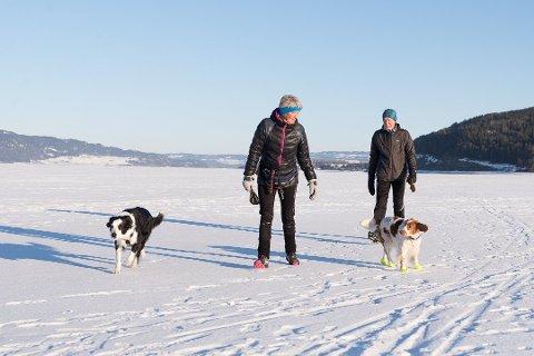 ISIDYLL: Inger Glorvigen og Erik Kristiansen sammen med hundene Cava og Keila opplever fine dager på isen. Foto: Jo E. Brenden
