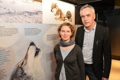 BLI KJENT MED ULVEN: Utstillingsansvarlig Elisabet Løvold og avdelingsdirektør Stig Hoseth i den delen av utstillingen hvor man blir kjent med ulven.