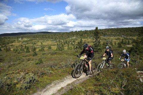 TØFT: For de som er glad i kronglete sti er UltraBirken på sykkel perfekt. Lørdag venter over seks mil med sti i den 112 kilometer lange løypa fra Pellestova til Lillehammer.
