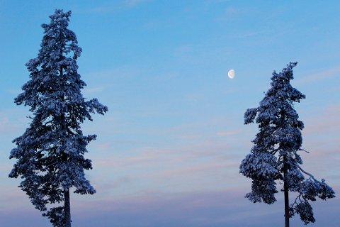 Det er ventet kjøligere temperaturer over store deler av landet til helgen. I de nordligste fylkene er det spådd snøbyger. Foto: Håkon Mosvold Larsen / NTB scanpix