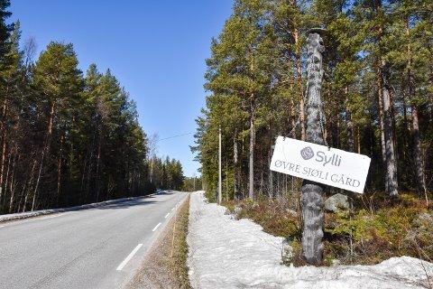 ØVRE SJØLI GÅRD: Det er Sylli Skog AS som har kjøpt Øvre Sjøli gård i Rendalen. Kommunen har avvist aksjeselskapet skal få konsesjon. Fylkesmannen vil gjøre vedtak i august.