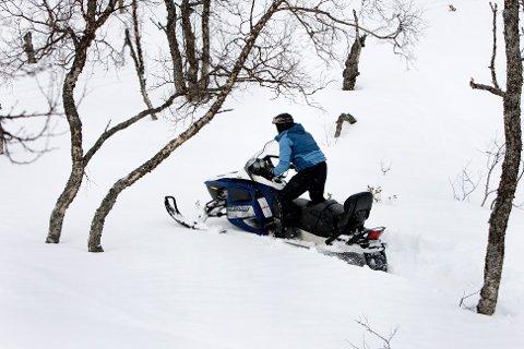 SKUTERLEDER: Det kan bli nye snøskuterleder i Trysil allerede i høst.