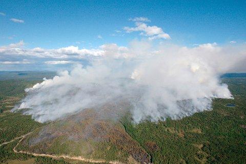 REGN: Med mindre det kommer skikkelige mengder med regn, vil skogbrannfaren fortsette å øke.