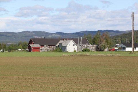 Sør Østerdal tingrett har fastsatt taksten på gården i Gjesåsen til 16,4 millioner koner. Foto: Britt-Ellen Negård