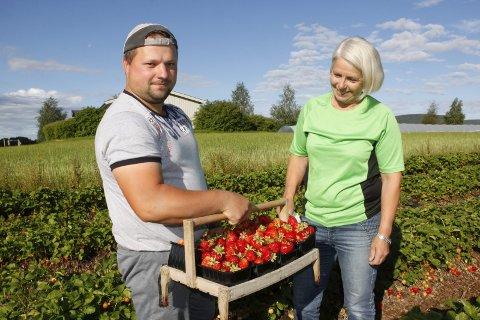 PLUKKERE: Eva Molberg er helt avhengig av at polakkene kommer for å plukke bæra hennes.  Michaz har plukket jordbær for Eva i flere sesonger. Arkivoto: Britt-Ellen Negår d