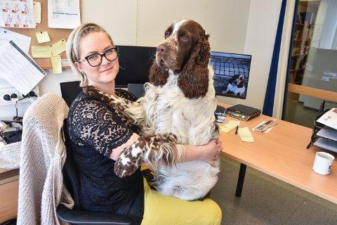 KOLLEGER: Ingrid Salen og Swix - som er en Engelsk springer spaniel - deler kontor for tiden.