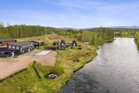 SKAL SELGES: Skogen, tidligere Dæsbekken på Åsnes Finnskog, er lagt ut for salg.