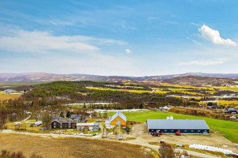 TIL SALGS: Gårdsbruket Vangsgjelten i Dalsbygda i Os.